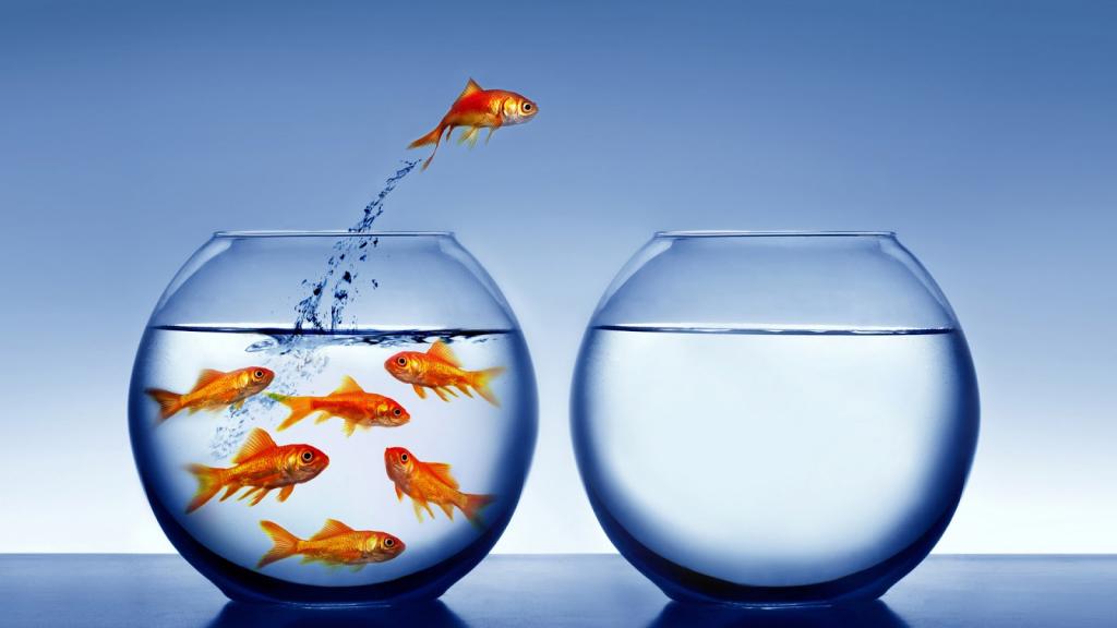 3 Creencias erróneas sobre el cambio profesional